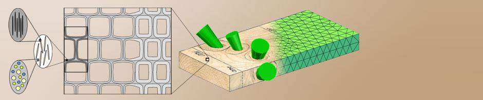 HolzInnovation durch Werkstoffverständnis